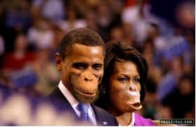 obamas-as-monkeys